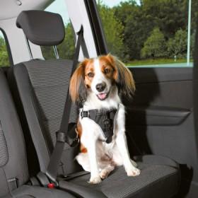 Autogeschirr Dog Comfort, XL