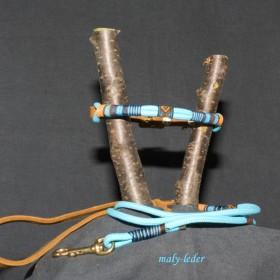 Halsband 30-35cm und/oder Leine
