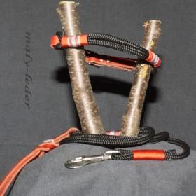 Halsband 35-40cm und/oder Leine