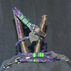 Halsband 45-50cm und Leine aus  Fettleder