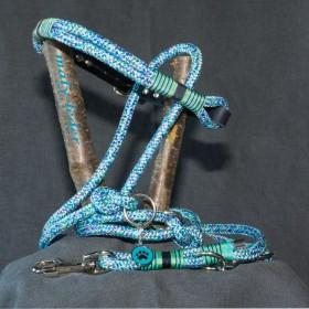 Halsband 40-45cm und/oder Leine