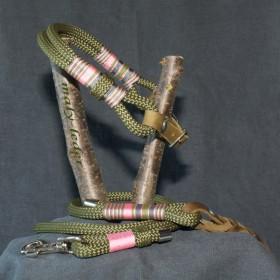 Halsband 50-55cm und/oder Leine
