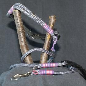 Halsband 40-45cm und Leine